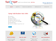 This website is designed by Logoinn for 'Sponge Insights'  in June , 2012