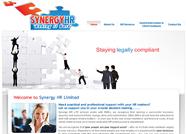 This website is designed by Logoinn for ' Synergy HR LTD'  in June , 2011.