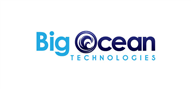 Logoinn created this logo for Big Ocean Technologies - who are in the Software Logo Design  Sectors