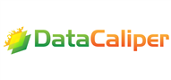 Logoinn created this logo for DataCaliper LLC - who are in the Computer Logo Design  Sectors
