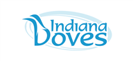Logoinn created this logo for Indiana Doves - who are in the Computer Logo Design  Sectors