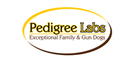 Logoinn created this logo for Pedigreelabs.com - who are in the Veterinary Logo Design  Sectors