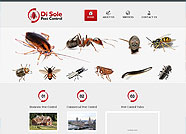 This website is designed by Logoinn for ' Di Sole Pest Control'  in January  , 2013