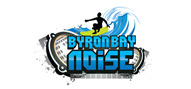 Logoinn created this logo for Byron Bay Noise - who are in the Entertainment Logo Design  Sectors