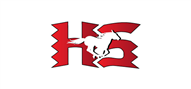 Logoinn created this logo for Hughes Springs ISD - who are in the Education Logo Design  Sectors