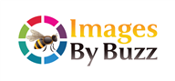 Logoinn created this logo for Images By Buzz - who are in the Photography Logo Design  Sectors