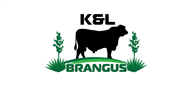 Logoinn created this logo for K&L Brangus - who are in the Pet Logo Design  Sectors