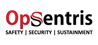 Logoinn created this logo for Opsentris - who are in the Security Services Logo Design  Sectors