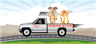 Logoinn created this logo for Rising Star Courier - who are in the Illustration Logo  Sectors