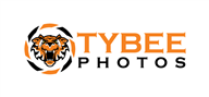 Logoinn created this logo for Tybee Photos - who are in the Animal Logo Design  Sectors